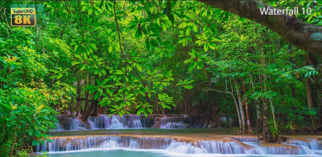 虐机8K视频资源分享下载 7680x4320分辨率 在红木林里一个人的旅行、奥地利风光、延时摄影丛林瀑布